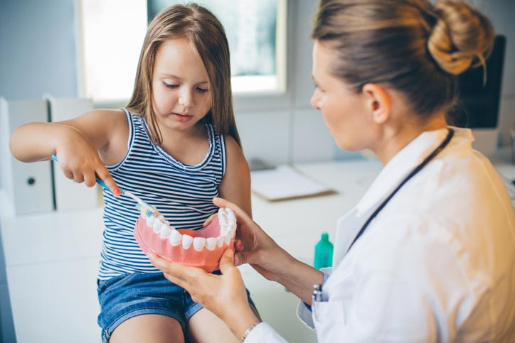 Dentist teaching her young patient how to brush using a model of teeth
